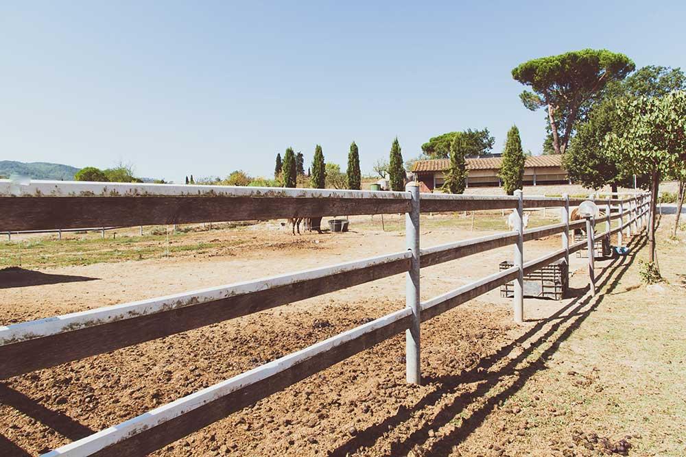 Percorso sensoriale olfattivo in fattoria
